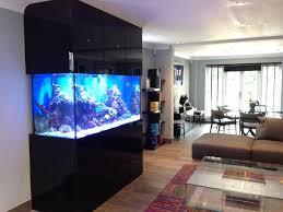 designer aquarium custom designer aquarium in derbyshire oceanlife aquatics