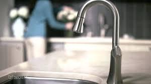 kitchen faucets pegasus kitchen faucet replacement sprayer