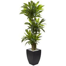 artificial plants silk plants nearly