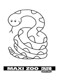colour in maxizoo
