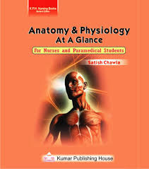 Human Anatomy And Physiology Books Anatomy And Physiology Book For Paramedical Student At Rs 125 00