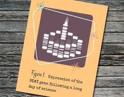 science birthday cards 40 best nerdy birthday cards images on