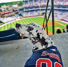 Atlanta Braves Parking Map by 10 Things To Do In Atlanta With Your Dog Atlanta Magazine