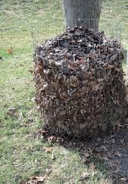 building the right compost bin tenth acre farm