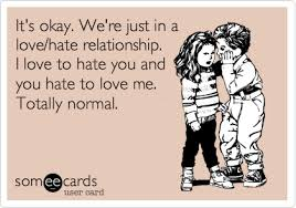 Love Hate Meme - it s okay we re just in a love hate relationship i love to hate