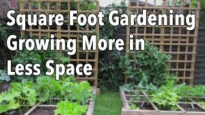 square foot gardening sfg growing more in less space youtube