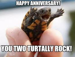 Anniversary Meme - meme maker happy anniversary you two turtally rock