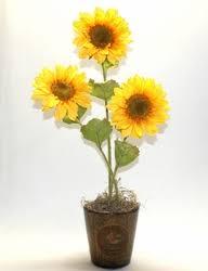 artificial sunflowers artificial sunflowers in rooster planter 22 inches fall decor