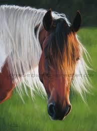 cool horses horse print horse drawn horse