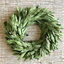 bay leaf wreath fresh bay leaf wreath fig dove