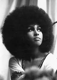 hairstyles in the late 60 s black history month iconic natural hairstyles natural hair icon