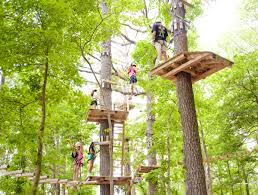 Maryland travel booking images Ropes course at frontier town ocean city md group travel booking png