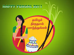 Pongal Invitation Cards Happy New Year Wallpapers 2016 Happy Pongal Pictures