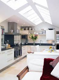 Metal Kitchen Cabinet by Kitchen Amusing Kitchens With Skylights For More Natural Light
