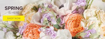 orange park florist lake park florist flower delivery by the flower shoppe a