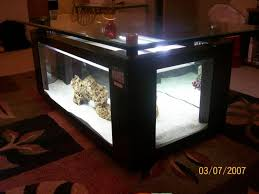 furniture interesting terrarium coffee table with coral and glass