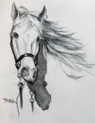 beautiful pencil sketches of animals drawing of sketch