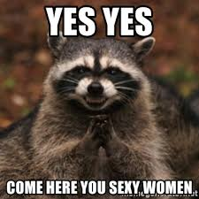 Sexy Women Meme - yes yes come here you sexy women evil raccoon meme generator
