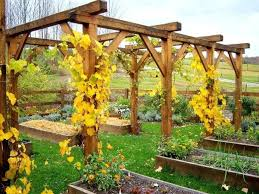 garden trellis designs photos diy garden trellis tower garden