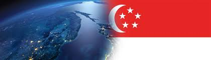 Singapur Flag Turkey Singapore Business Council Deik