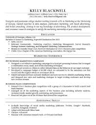 resume template docs resume template sle resume templates docs