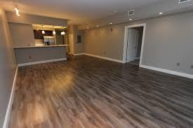 770 elmwood apartments buffalo ny apartment finder