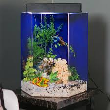 halloween fish tank background clear for life hexagon aquarium walmart com