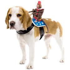 Dog Costume Halloween Humorous Dog Costumes Riding