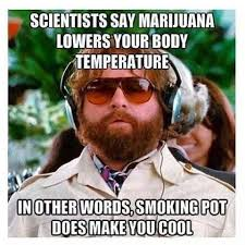 Funny Stoner Memes - tgif here are the best weed memes of the week slyng com