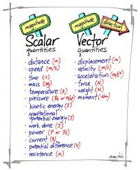 scalar and vector quantities physics math and physical science