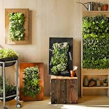 How To Plant Vertical Garden - 8 easy ways to create a vertical garden wall inside your home
