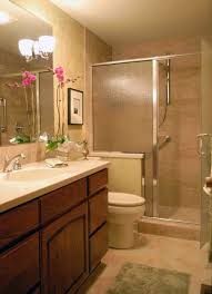 Designing Small Bathrooms by Walk In Shower Ideas For Small Bathrooms Bathroom Decor