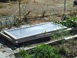 wheelbarrow trays new plants preparing planting stock photo
