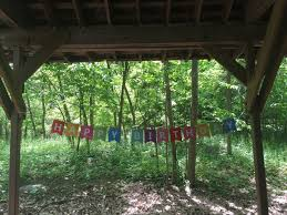 themes in the education of little tree tenafly nature center birthday party themes