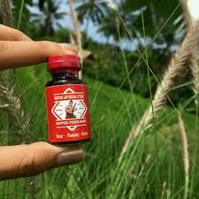 alamat jual minyak lintah asli papua di bali antar gratis