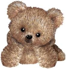 imagenes animadas oso desgarga gratis los mejores gifs animados de osos imágenes animadas