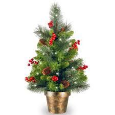 real mini christmas tree with lights potted christmas trees you ll love wayfair