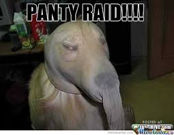 Raid Meme - panty raid by luv2laff meme center