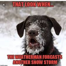Snow Memes - snow memes cafemom mobile