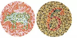 How Many People Are Color Blind 12 Color Blind Test Charts From Easy To Hard How Many Can You