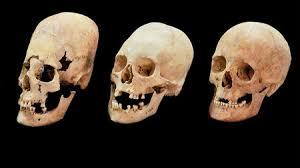 strange elongated skulls reveal bulgarian brides were