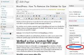 wordpress how to remove the sidebar for specific pages nanny