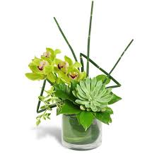flower delivery miami stately succulent bouquet miami gardens florist flowers