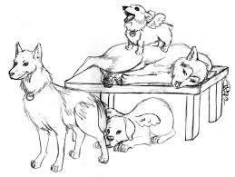 animal printable realistic husky coloring pages coloring tone
