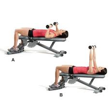 Home Bench Press Workout 201 Best Bench Press Images On Pinterest Bench Press Benches