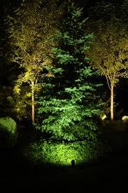 professional landscape tree lighting park city salt lake