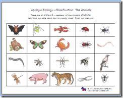 free printable worksheets vertebrates invertebrates sorting classifying vertebrates invertebrates apologia science