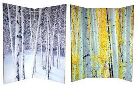 6 ft tall double sided birch trees room divider rustic