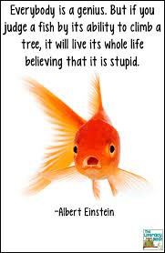 quote einstein everyone is a genius fish in a tree a book review adventures in literacy land