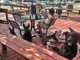 Dog Patio Dog Friendly Restaurants In San Antonio